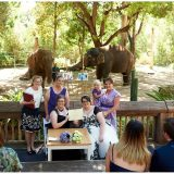 Same Sex WEdding Blog - Main Photo - TAG - Same Sex Weddings, Love Bird Ceremonies, Perth Zoo