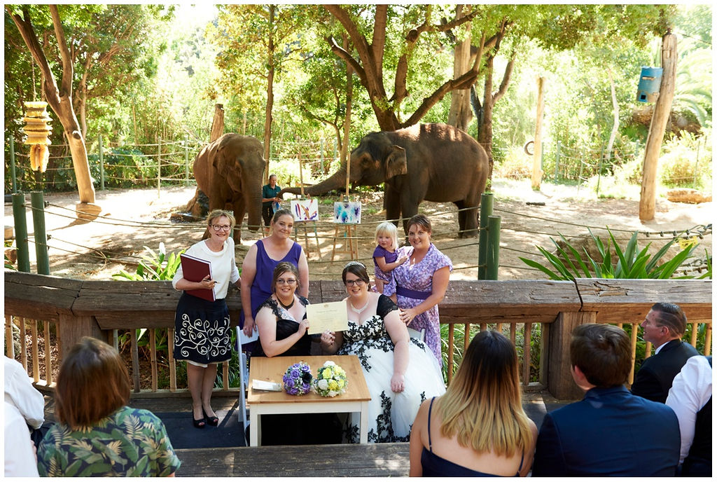 Same-Sex-WEdding-Blog-Main-Photo-TAG-Same-Sex-Weddings-Love-Bird-Ceremonies-Perth-Zoo.jpg